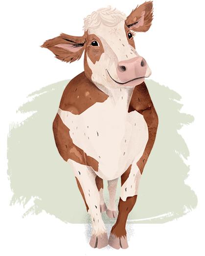 Kuh ohne Name